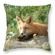Relaxed Fox Throw Pillow