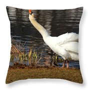 Relaxed Swan Throw Pillow