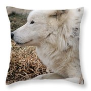 Relaxing In The Afternoon Throw Pillow