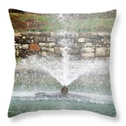 Relaxing In The Park Throw Pillow