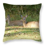 Relaxing In The Sun And Shade Throw Pillow