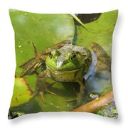 Relaxing On A Lily Pad  Throw Pillow