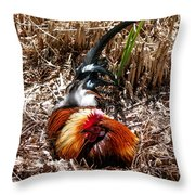 Relaxing Rooster Throw Pillow