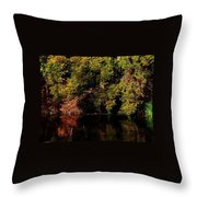 Relaxing To Sight Of Nature Throw Pillow