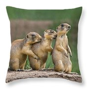 Relaxing Utah Prairie Dogs Cynomys Parvidens Wild Utah Throw Pillow
