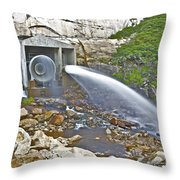 Release And Discharge Lower Bear River Throw Pillow