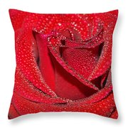 Relevance Of Love Throw Pillow