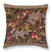 Remainders Throw Pillow