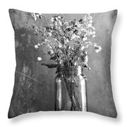 Remains Of The Season Throw Pillow
