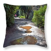 Remains Of The Storm Throw Pillow