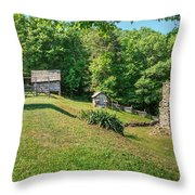 Remains Of Willie Gibbons House Throw Pillow