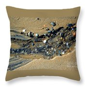 Remants Throw Pillow