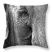 Remembered Lucy  Throw Pillow