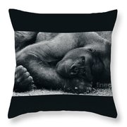 Remembering Fay Wray Throw Pillow