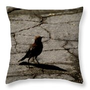 Remembering Hitch Throw Pillow