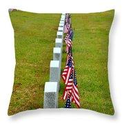 Remembering Veteran's Day Throw Pillow