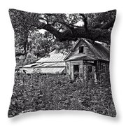 Reminder Of Better Days Throw Pillow