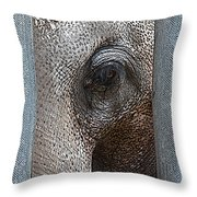 Reminiscent Elephant Throw Pillow