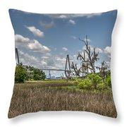 Remleys Point Bridge View Throw Pillow