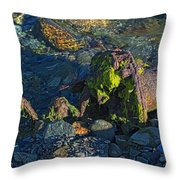 Remnant Throw Pillow