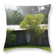 Remnant Of An Old Barn Throw Pillow