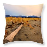 Remote New Zealand Beach Throw Pillow
