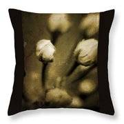 Renewal Of Life Throw Pillow