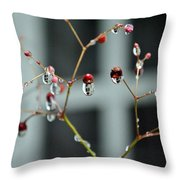 Repeated Reflections Throw Pillow