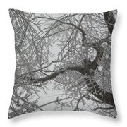 Rescue Me From This Winter Throw Pillow