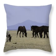 Reservation Horses 4 Throw Pillow