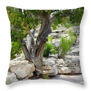Resilient Tree Throw Pillow