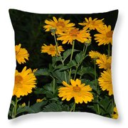 Resplendent Yellows Throw Pillow