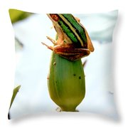 Rest For A While Throw Pillow