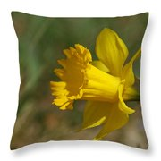 Rest In Peace Sherry Holder Hunt Throw Pillow