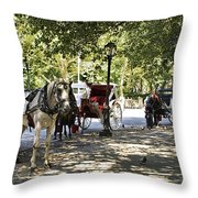 Rest Stop - Central Park Throw Pillow
