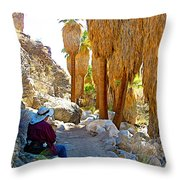 Rest Stop In Andreas Canyon Trail In Indian Canyons-ca Throw Pillow
