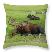 Rest Those Tired Legs Throw Pillow