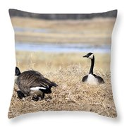 Restful Migration Throw Pillow