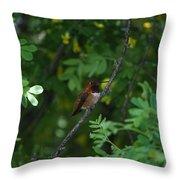 Restful Perch Throw Pillow