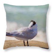 Resting At The Beach Throw Pillow