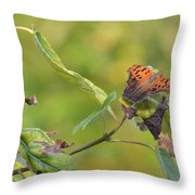 Resting Butterfly Throw Pillow