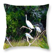 Resting Flock I Throw Pillow