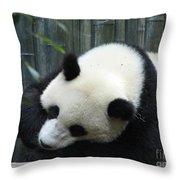 Resting Giant Panda Bear Throw Pillow