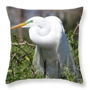 Resting Great Egret Throw Pillow