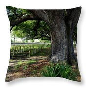 Resting In The Shade Throw Pillow by Beth Vincent