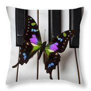 Resting On The Piano Throw Pillow by Garry Gay