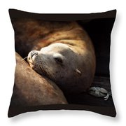 Resting On The Pier Throw Pillow
