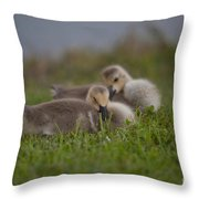 Resting Our Eyes Throw Pillow