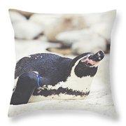 Resting Penguin Throw Pillow