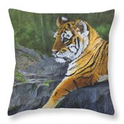 Resting Place - Tiger Cub Throw Pillow
